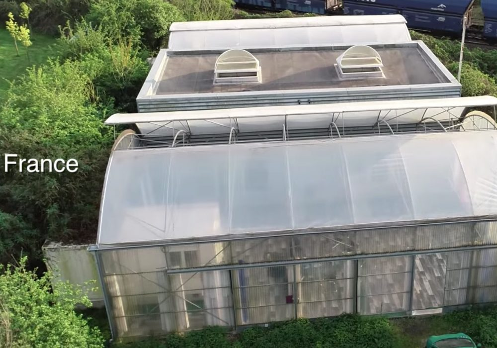 2 greenhouses and 3 containers in wasteland become dream home
